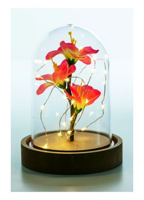 DOME LUMINEUX ORCHIDEE